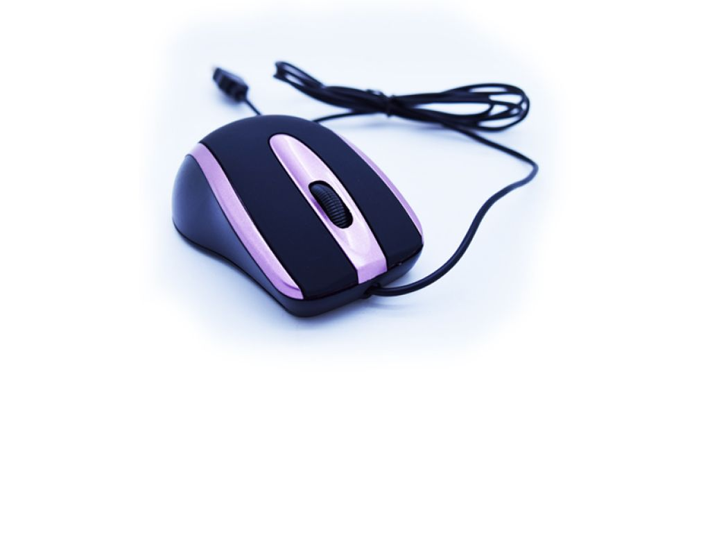 MOUSE HAVIT PURPLE 1000 DPI CABLE 1.35M